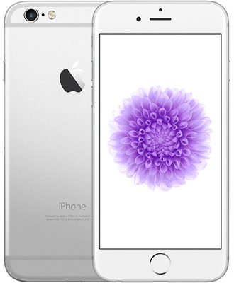The style viewed in the iPhone 6 has become exemplary